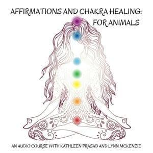 Affirmations Chakra Healing Audio 300px