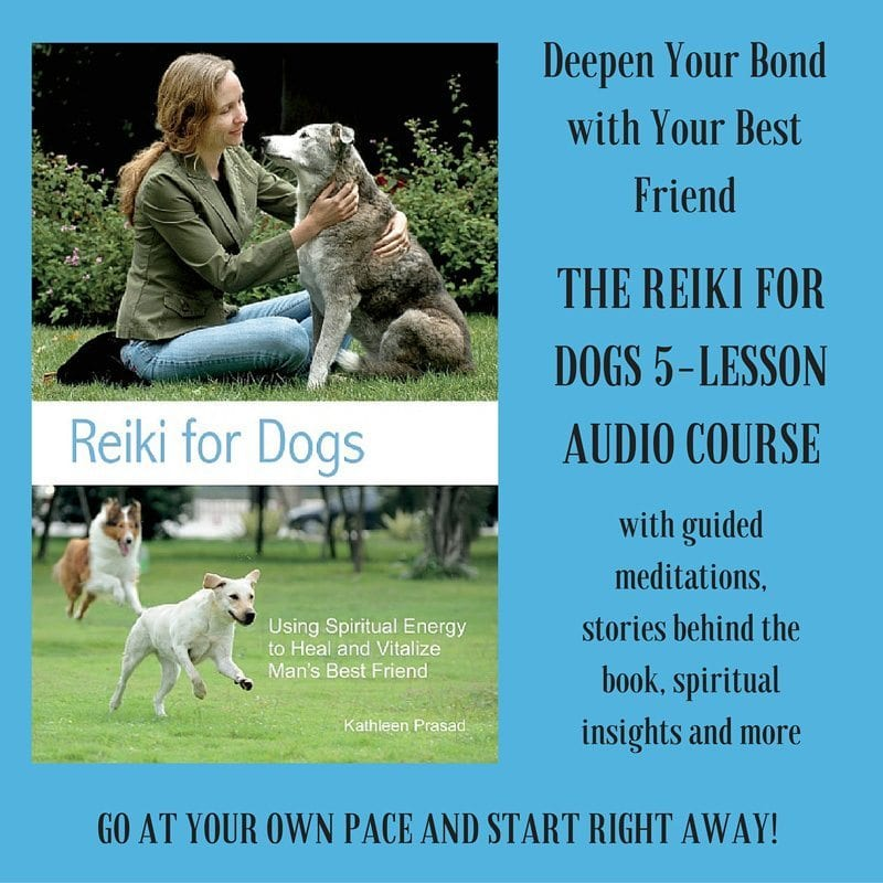 Reiki for Dogs audio course