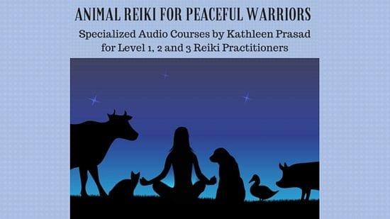 peacefulwarriors4classespage