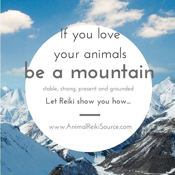 if you love your animals 600px