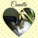 Camille photo