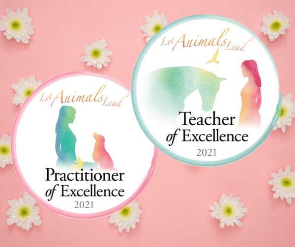 2021 Practitioner and Teacher of Excellence Program icons