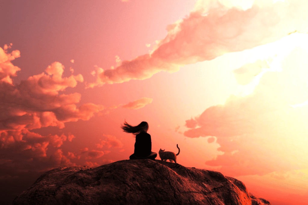 a woman sitting with a cat in front of a pink and orange sunset