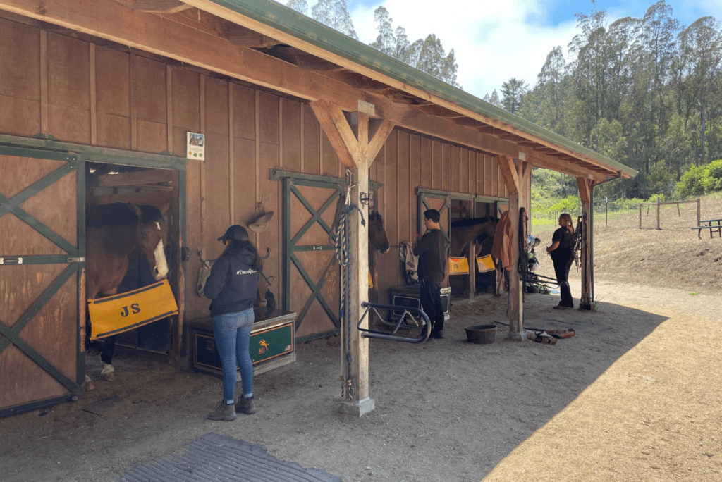 people outside the stables with horses