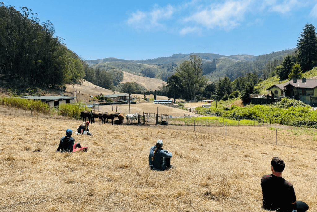 people sitting in a field at square peg foundation